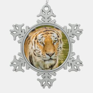 tijger op het Ornament van de Sneeuwvlok van het