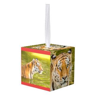 tijger op kubusornament decoratie  0