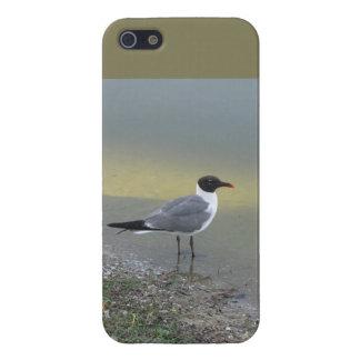 Tjilp, van de Rand van de Rivier - 5/5S Hoesje iPhone 5 Covers