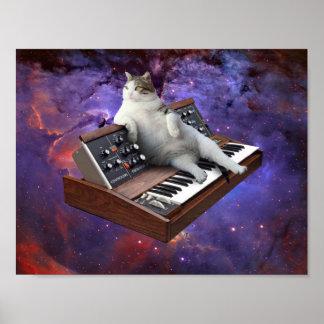toetsenbord kat - kat memes - gekke kat poster