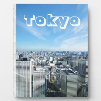 Tokyo, Japan Fotoplaat