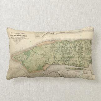 Topografische Atlas van de Stad New-York, 1874 Lumbar Kussen
