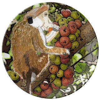 Toque Macaque die van Dryzone Fig. eten Porseleinen Borden
