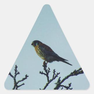 Torenvalk Stickers