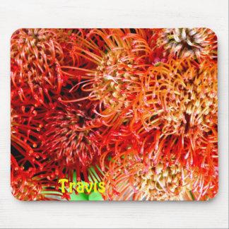 TRAVIS ~ het Gepersonaliseerde Slaan Banksia ~ Muismatten