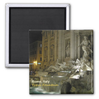 Trevi van Rome Italië de Magneet van de Foto van d