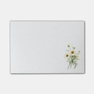 tricolor madeliefje (carinatum van de Chrysant) Post-it® Notes