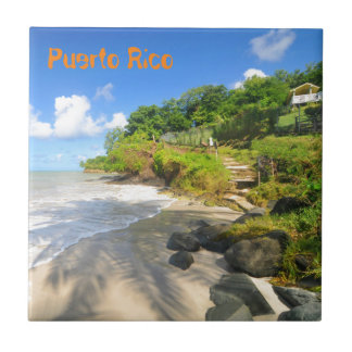 Tropisch eiland in Puerto Rico Tegeltje