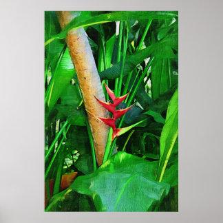 Tropische Heliconia - Gang in de tuin Poster