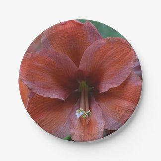 Tropische Rode Bloem Papieren Bordje
