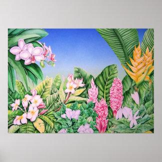 Tropische Tuin Posters