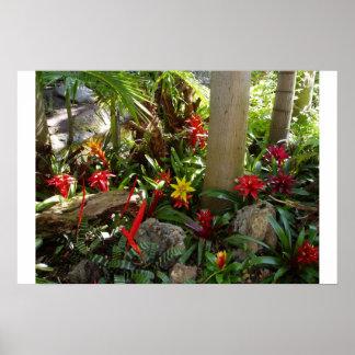 Tropische Tuin Poster
