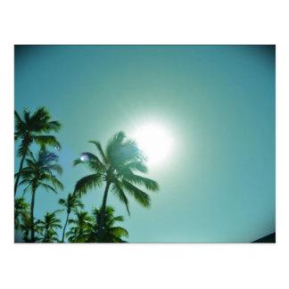Tropische Zon Briefkaart