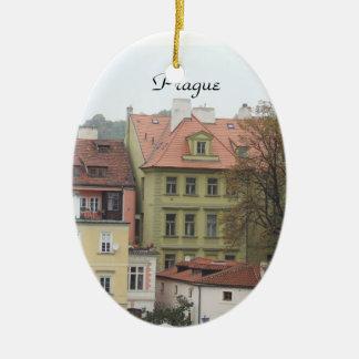 Tsjechische Ornament van de Gebouwen van Praag het