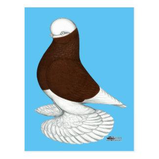 Tuimelschakelaar:  Verknoeide Rode Kaal Briefkaart