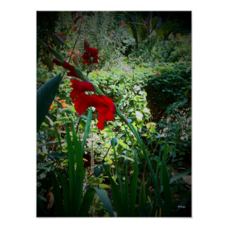 Tuin Posters