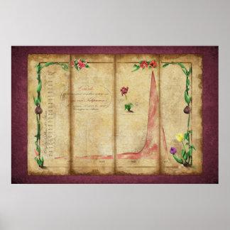 Tulipomania Graph (byzantium) Poster