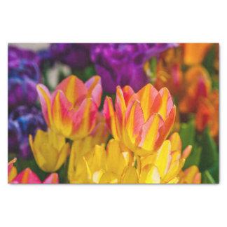 Tulpen die 16 verrukken tissuepapier