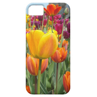 Tulpen in het Hoesje van iPhone van de Wind