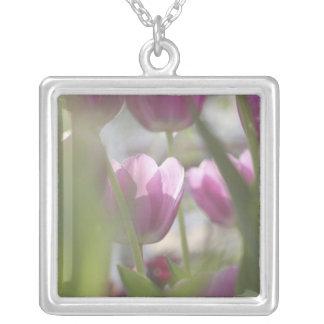 Tulpen, Keukenhoff Tuinen, Nederland Zilver Vergulden Ketting