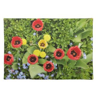 tulpen placemat