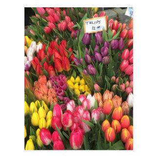 Tulpen voor de Foto van Bodega van de Hoek van de Briefkaart