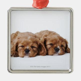 Twee Arrogant puppy van Charles Spaniel van de Zilverkleurig Vierkant Ornament