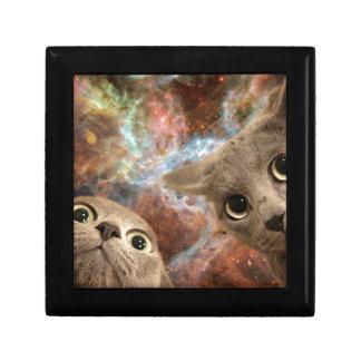 Twee Grijze Katten in Ruimte vóór een Nevel Vierkant Opbergdoosje Small