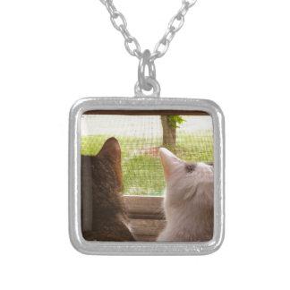 Twee Katten BFF die uit het Venster staren Ketting Vierkant Hangertje