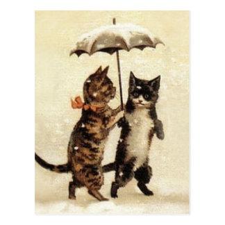 Twee Katten Één Paraplu Briefkaart