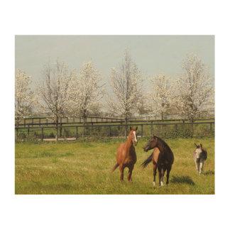 Twee Paarden en een Ezel die in de Lente weiden Hout Afdruk