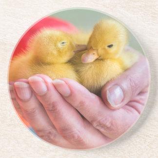 Twee pasgeboren gele eendjes die op hand zitten zandsteen onderzetter