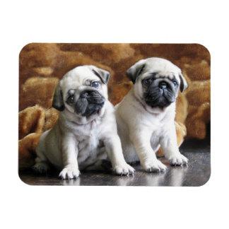 Twee Pugs Magneet