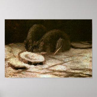 Twee Rats Van Gogh Fine Art. Poster