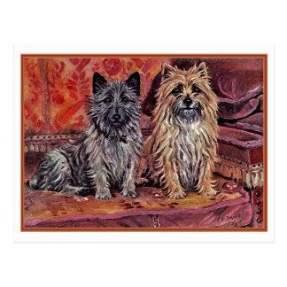Twee Steenhoop Terriers Briefkaart