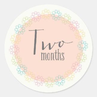 Twee van de Nieuwe Maanden Sticker van het Baby