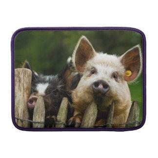 Twee varkens - varkensfokkerij - MacBook sleeve