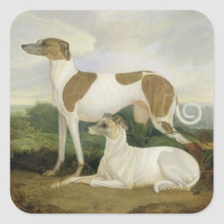 Twee Windhonden in een Landschap (olie op canvas) Vierkante Stickers