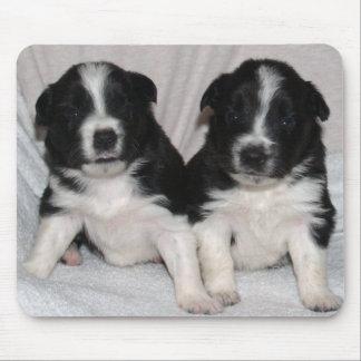 twee zwart-wit puppy muismatten
