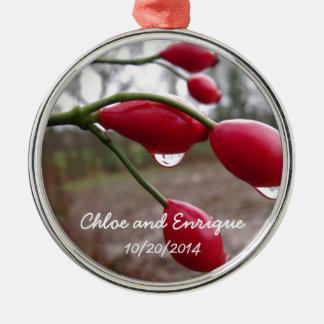 Tweeling Rozebottels en Regen Gepersonaliseerd Zilverkleurig Rond Ornament