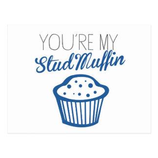 U bent Mijn Muffin van de Nagel Briefkaart