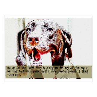 U kunt om het even welk dwaas ding aan een hond… briefkaart