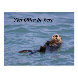 U Otter bent hier Briefkaart