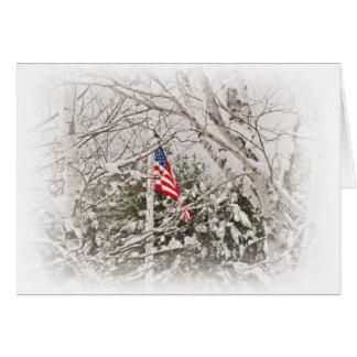 U.S.A. De Scène van de vlag Briefkaarten 0