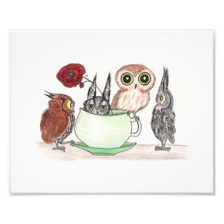 Uilen in Teatime Foto Kunst