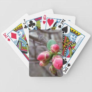 uiterst kleine rode knoppen pak kaarten