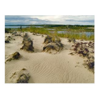 Uitzicht van een zandige heuveltop van meren en briefkaart