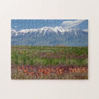 Utah, de V.S. Mt. de Stijgingen van Timpanogos Legpuzzel