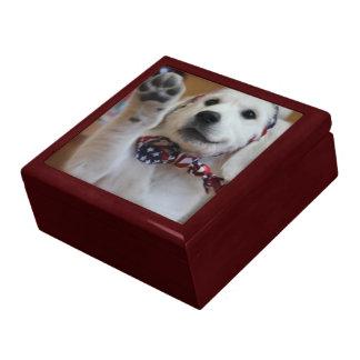 Uw huisdier op een gift-doos decoratiedoosje