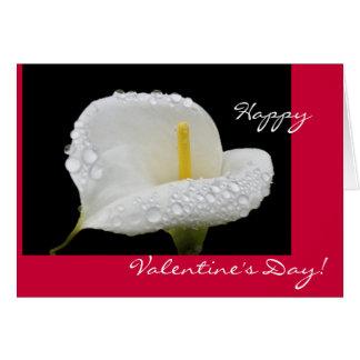 Valentijnsdag - Calla de dalingen van de Lelie en Wenskaart